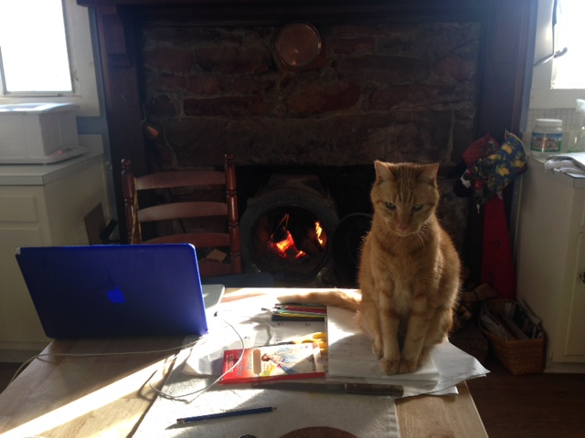 Cat, Cozy Cat, Cat in front of the Fireplace, My Home Office on a Winter Day