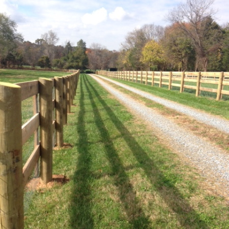The Fence Row at Three Graces Farm