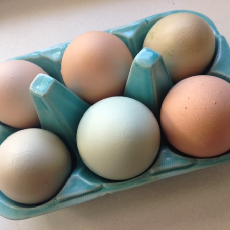 Home Grown Eggs