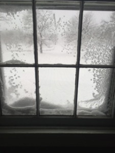Frosted Windowpanes